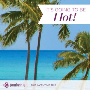 2017 Jamberry incentive trip to Punta Cana