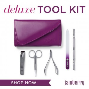 jamberry deluxe tool kit