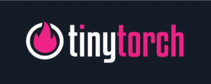tiny torch review